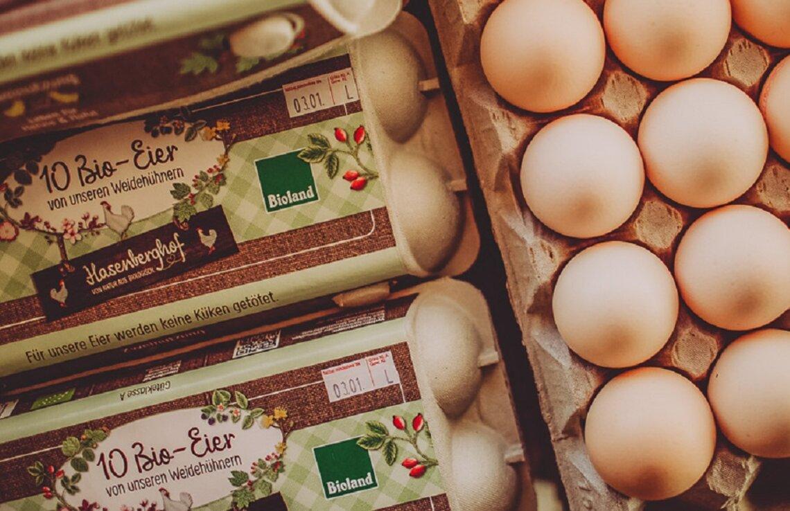 Bioland Eier mit Bruderhahn-Aufzucht